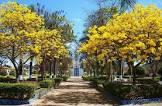 Foto da cidade de Couto de Magalhães de Minas