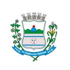 Foto da cidade de Altamira do Paraná