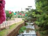 Foto da Cidade de Áurea - RS
